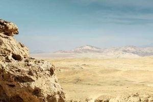 Морские динозавры 3D: Путешествие в доисторический мир 6761