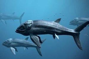 Морские динозавры 3D: Путешествие в доисторический мир 6772