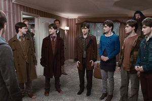 Гарри Поттер и Дары смерти: Часть 1 7313