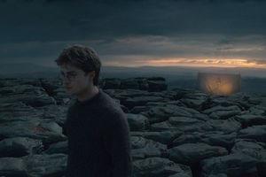 Гарри Поттер и Дары смерти: Часть 1 7317