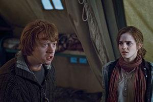 Гарри Поттер и Дары смерти: Часть 1 7311