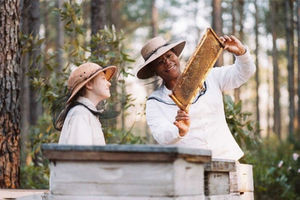 Тайная жизнь пчел 7707