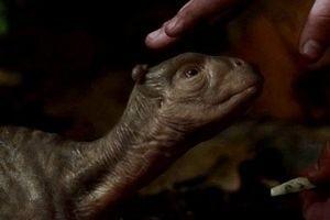 Мой домашний динозавр 2033