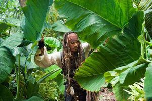 Пираты Карибского моря: На странных берегах 9168