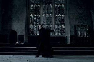Гарри Поттер и Дары смерти: Часть 2 9728