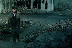 Гарри Поттер и Дары смерти: Часть 2 9717