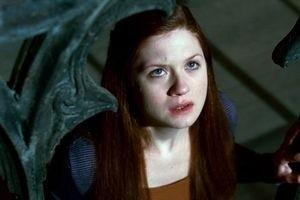 Гарри Поттер и Дары смерти: Часть 2 9723