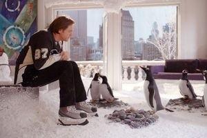 Пингвины мистера Поппера 9762