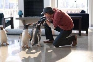 Пингвины мистера Поппера 9746