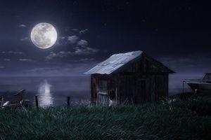 Мухнем на Луну 3D 2488