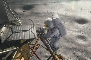 Мухнем на Луну 3D 2484