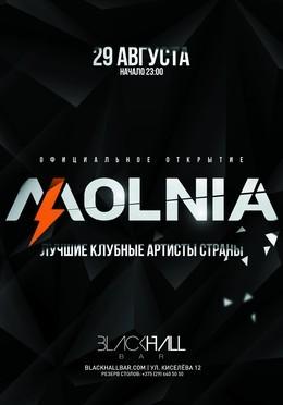 Официальное открытие портала MOLNIA