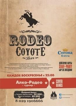 Проект «Алко-Родео»