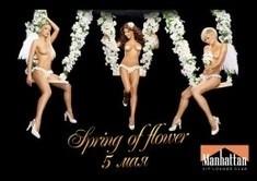 Spring of Flower