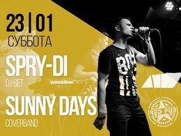Концерт кавер-бэнда Sunny Days