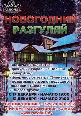 Новогодняя ночь «Новогодний разгуляй»