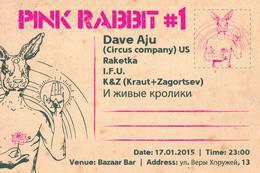 Pink rabbit #1