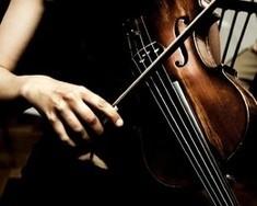 День скрипки Страдивари