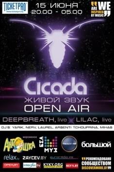 Фестиваль живой и электронной музыки с участием  британской группы «Cicada»
