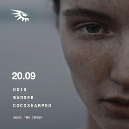 Odis / Badger / Cocoshmpoo