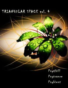 Triangular Space vol. 4