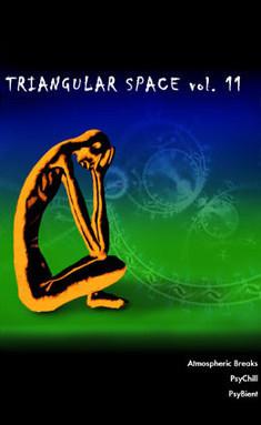 Triangular Space Vol.11