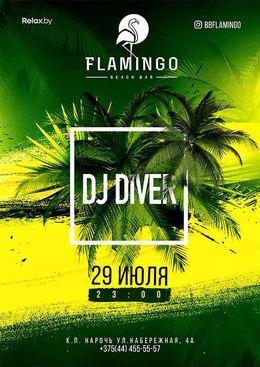 DJ Diver