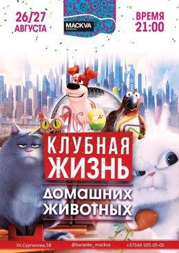 Клубная жизнь домашних животных