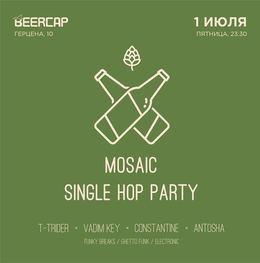 Mosaic Single Hop party