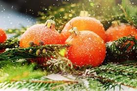 Новый год 2017 (2 дня) от 330 рублей
