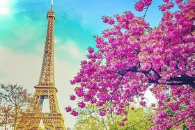 Места Парижа, о которых знают только местные