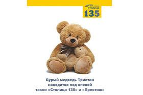 Минский зоопарк передал под опеку такси «Столица 135» и «Престиж», бурого медведя «Тристан»