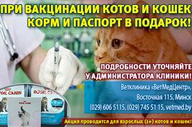 При вакцинации котов и кошек - корм и паспорт в подарок!