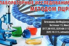 Лабораторные исследования методом ПЦР.