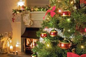 Объявляем набор симпатичных компаний гостей на Новогодние и рождественские праздники!
