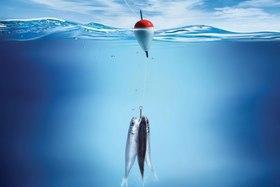 Ограничение рыбалки