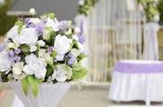 Студия свадебного декора Елены Макаровой -