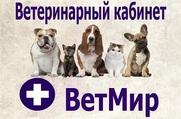 Вет Мир - Ветеринарный кабинет