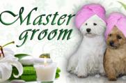 Master Groom - Салон красоты для животных