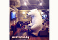Белый Мишка на праздник со скидкой 25% 5