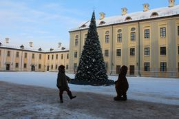 Прочее Фотоконкурс от музея-заповедника «Несвиж» До 31 января