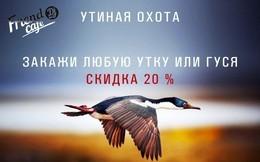 Акция «Утиная охота»