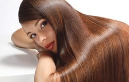 Красота и здоровье Скидка 25% на реконструкцию волос До 30 сентября