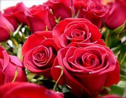 Акция к 8 Марта «День красоты». Скидки 20%