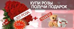 Акция «Купи букет из 101 розы и получи подарок - мишку и конфеты Raffaello »