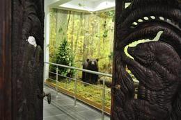 Скидка 100% на экскурсионное обслуживание в музее природы