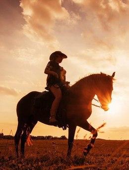 Акция «Прогулки на лошадях со скидкой по средам»