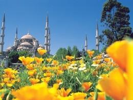 Турция (Кушадасы) от 23,6 млн руб.
