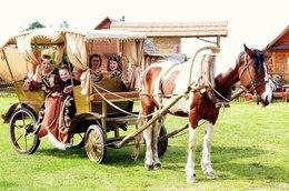 Акция «При заказе корпоратива от 60 человек катание на лошади бесплатно»