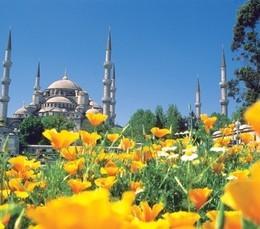 Скидка 5% на туры в Турцию
